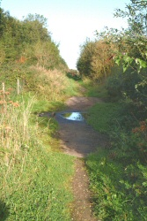 2. Lower Path, Ford