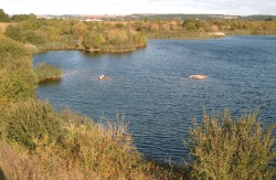 4 DeepPit250 Guided walk around the Netherfield Lagoons