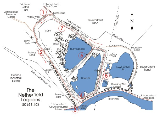 Guided Walk Map - Netherfield Lagoons, Nottinghamshire