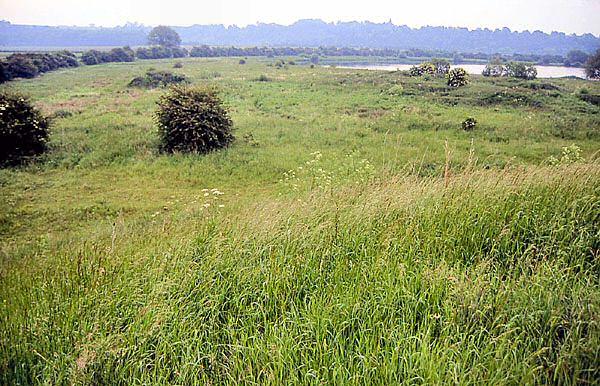 Gravel Pits-Gropper-territory