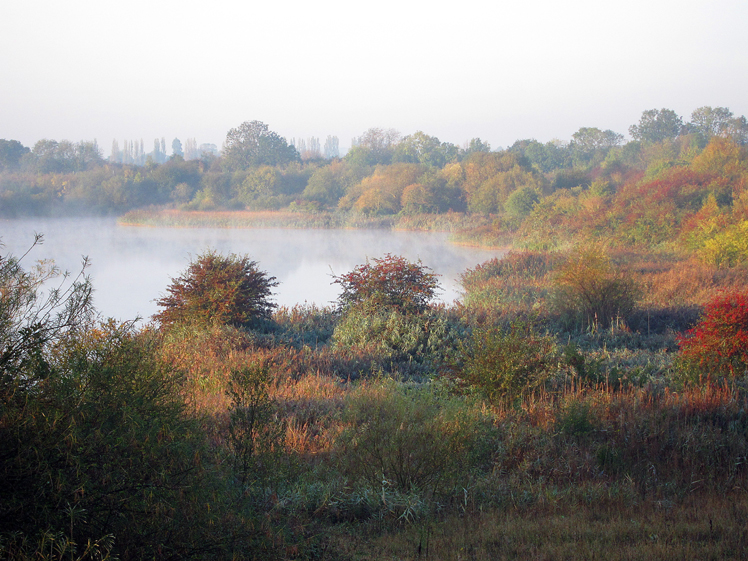 Deep Pit in Autumn