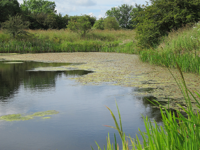 Small Gravel Pit