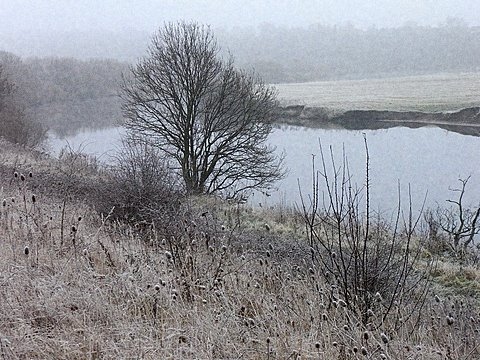 Frosty River Bank