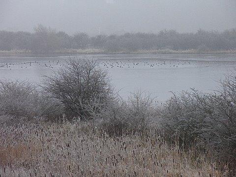Frozen Large Gravel Pit