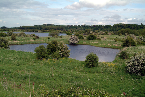 The two Gravel Pits