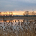 Slurry Lagoon - Sunset