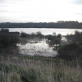 Flooded Gravel Pits
