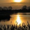 Slurry Lagoon-sunset