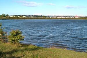 The Slurry Lagoon
