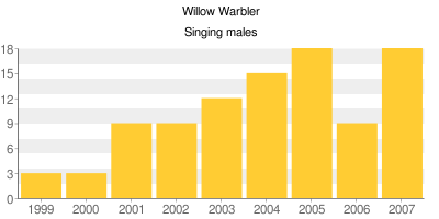 Willow Warblers - Singing males