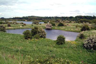 The Gravel Pits
